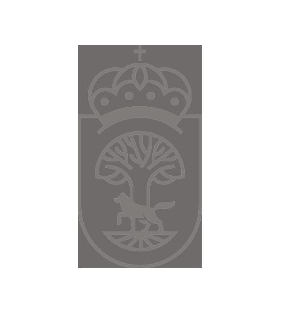Rediseño Identidad Ayuntamiento de Vinuesa